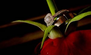 detail-wedding-ring-on-flower.jpg